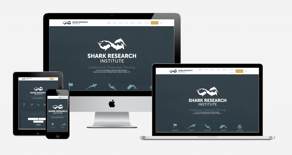 Carbon Digital Project Featured Image for Shark Research Institute
